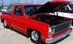 79 Chevy SNB Pickup