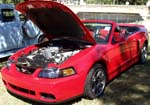 03 Ford Mustang Cobra Convertible